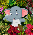cute pose of the baby elephant in forest vector image