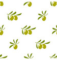 olives seamless pattern isolated on white vector image vector image