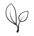 stylized silhouette of spring tree leaf isolated vector image