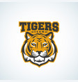 tiger team abstract sign emblem or logo vector image