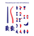 traumatology and orthopedics vector image