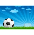 ball on a football pitch vector image