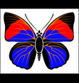 black red and blue coloured leafwing butterfly vector image vector image