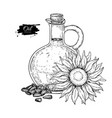 bottle of sunflower oil with flower and heap of vector image vector image