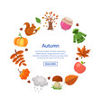 cartoon autumn elements and leaves in vector image