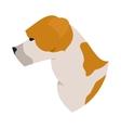Dog head american staffordshire terrier vector image vector image