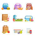 flat set of school lunch boxes and bags vector image vector image
