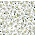 floral seamless texture flowers and leaves on a vector image vector image