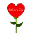 heart shaped flower valentine day vector image