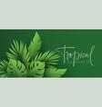 hello summer banner paper-cut green tropical vector image vector image