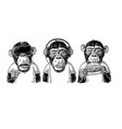three wise monkeys not see not hear not speak vector image