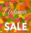 background with autumn leaves sale vector image vector image