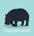 cute hippopotamus design on sky blue vector image