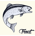 Jumping trout isolated vector image vector image