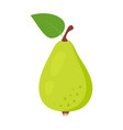 pear isolated on white background vector image vector image