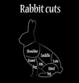 Rabbit cuts chart vector image vector image