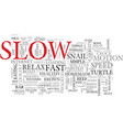 slow word cloud concept vector image vector image