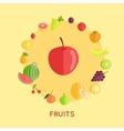 Set of Fruit in Flat Design vector image