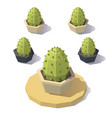 low poly cactus vector image