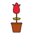 cute rose garden with pot isolated icon vector image vector image