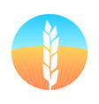 ears of wheat on round emblem with farm field vector image vector image