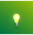 Light shines on a green background vector image
