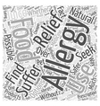 Natural Allergy Relief Is It Possible Word Cloud vector image vector image