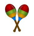 pair of maracas musical instrument vector image