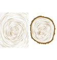 tree wood slice natural years line circle ring vector image vector image