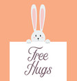 white rabbit with free hugs sign vector image vector image