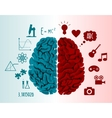 Brain infographics vector image