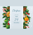 christmas background with sweets and fir vector image vector image