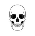 decoration outline skull vector image
