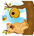 teddy bear eats honey bee vector image