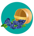 wooden underlying basket with blueberries vector image vector image