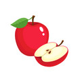 bright of colorful juicy apple vector image