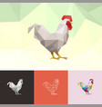 chicken rooster animal pet low poly logo icon vector image vector image