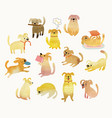 Cute watercolor yellow dogs