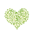 Fresh Sprout Beans in A Heart Shape vector image vector image
