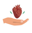 heart donation giving hand with vector image