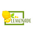 lemonade square emblem with citrus fruit and vector image