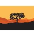 Silhouettes of trees in the desert vector image vector image