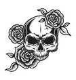 vintage human skull tattoo concept vector image vector image