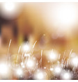 abstract defocused bokeh lights nature spring vector image