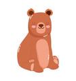 cute animals bear cartoon isolated icon design vector image