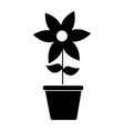 cute flower garden with pot isolated icon vector image vector image