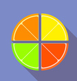 Flat graphic citrus fruits vector image vector image