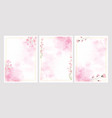 pink watercolor flower splash background vector image vector image