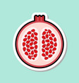 pomegranate sticker on blue background colorful vector image
