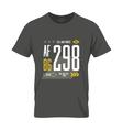 Shabby t-shirt US aircraft emblem vector image vector image